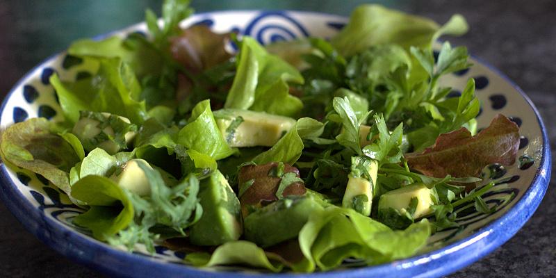 Koriandersalat med avocado og lime